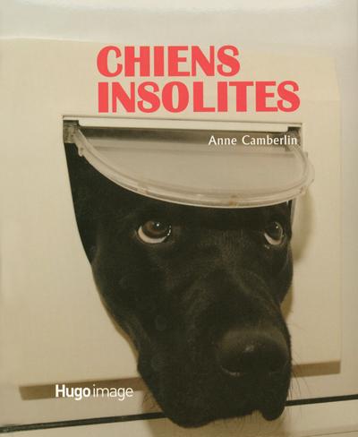 CHIENS INSOLITES