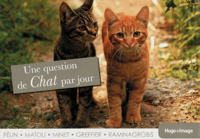 UNE QUESTION DE CHAT PAR JOUR 2013
