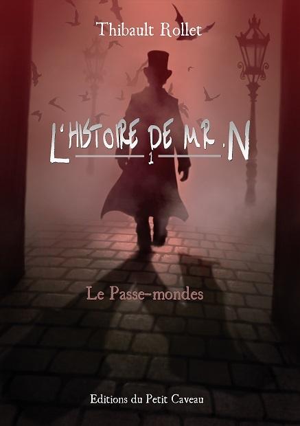 L'HISTOIRE DE MR. N - 1