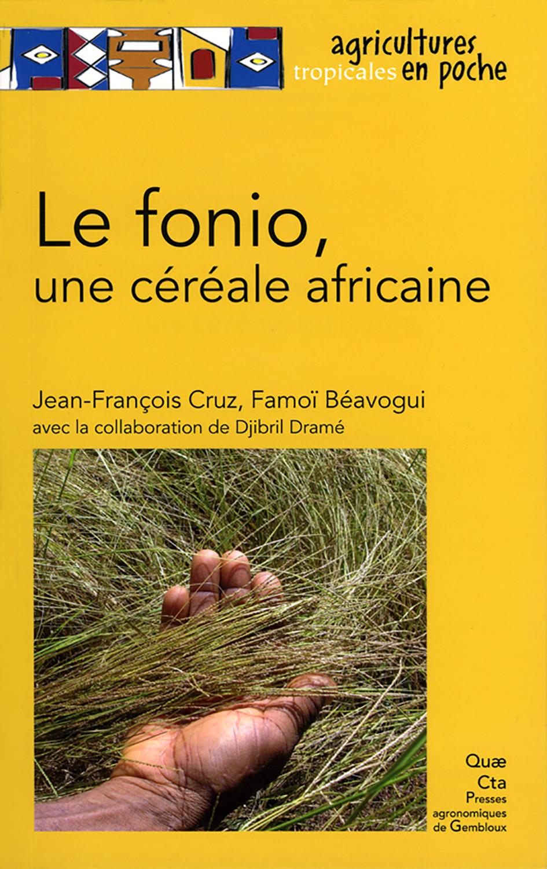 LE FONIO, UNE CEREALE AFRICAINE