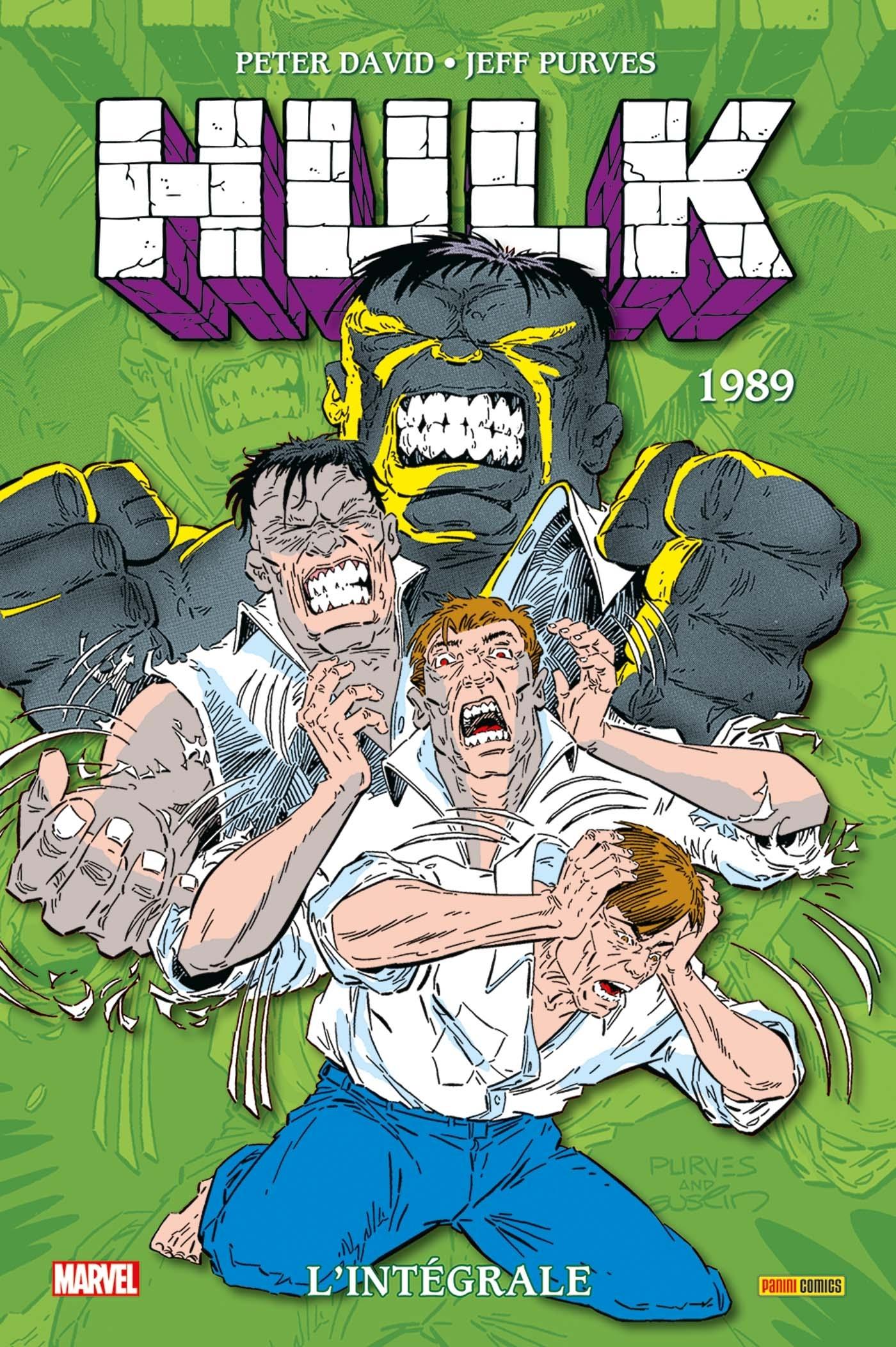 HULK : L'INTEGRALE 1989 (NOUVELLE EDITION)