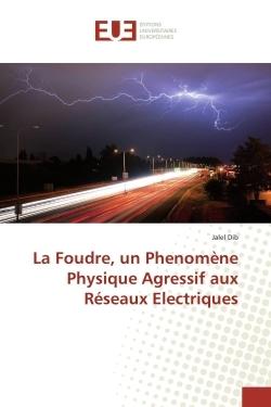 LA FOUDRE, UN PHENOMENE PHYSIQUE AGRESSIF AUX RESEAUX ELECTRIQUES