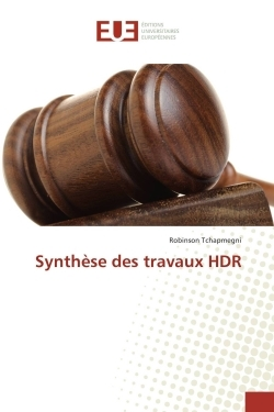 SYNTHESE DES TRAVAUX HDR