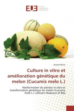 CULTURE IN VITRO ET AMELIORATION GENETIQUE DU MELON (CUCUMIS MELO L.)