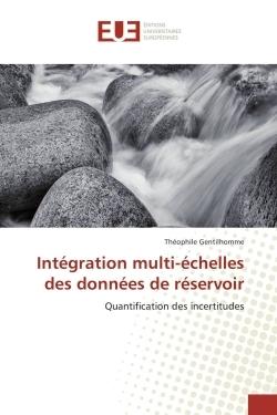 INTEGRATION MULTI-ECHELLES DES DONNEES DE RESERVOIR
