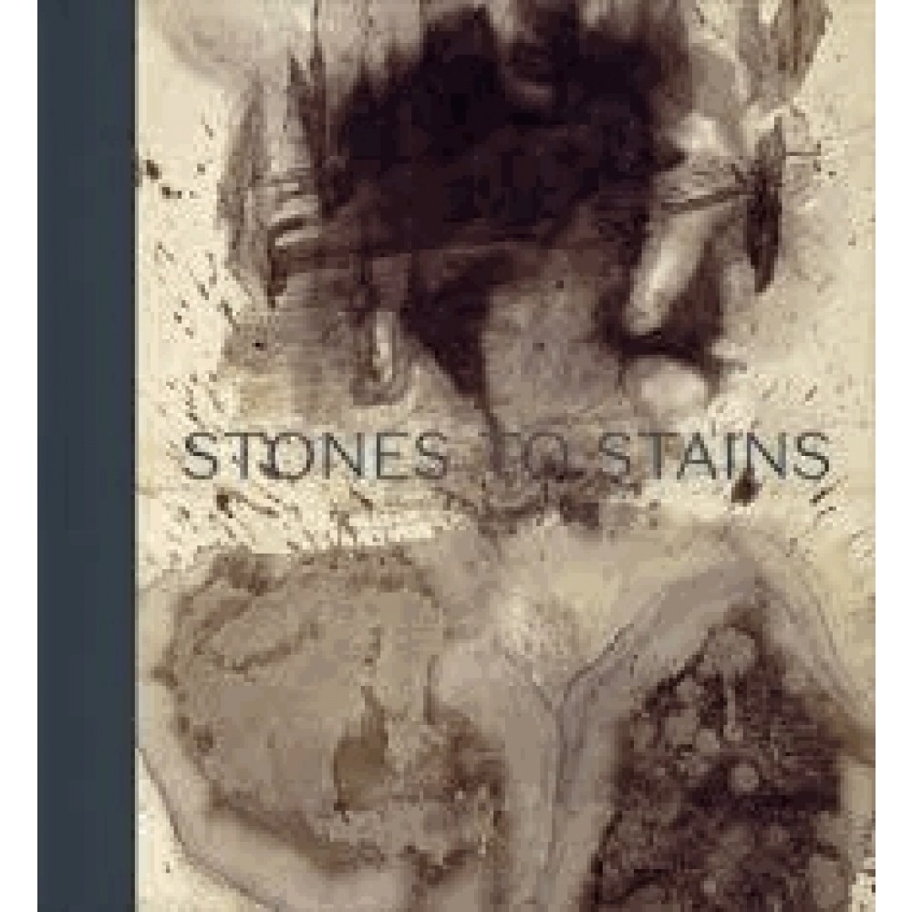 STONES TO STAINS THE DRAWINGS OF VICTOR HUGO /ANGLAIS