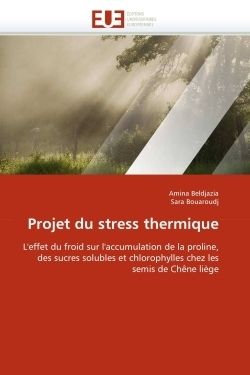 PROJET DU STRESS THERMIQUE