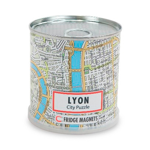 DISPLAY CITY PUZZLE LYON 100 PIECES MAGNETIQUES (4