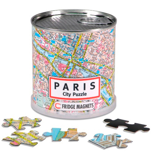 DISPLAY CITY PUZZLE PARIS 100 PIECES MAGNETIQUES (