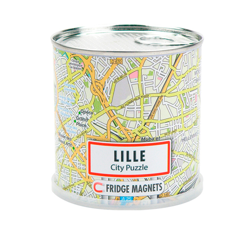 DISPLAY CITY PUZZLE LILLE 100 PIECES MAGNETIQUES (