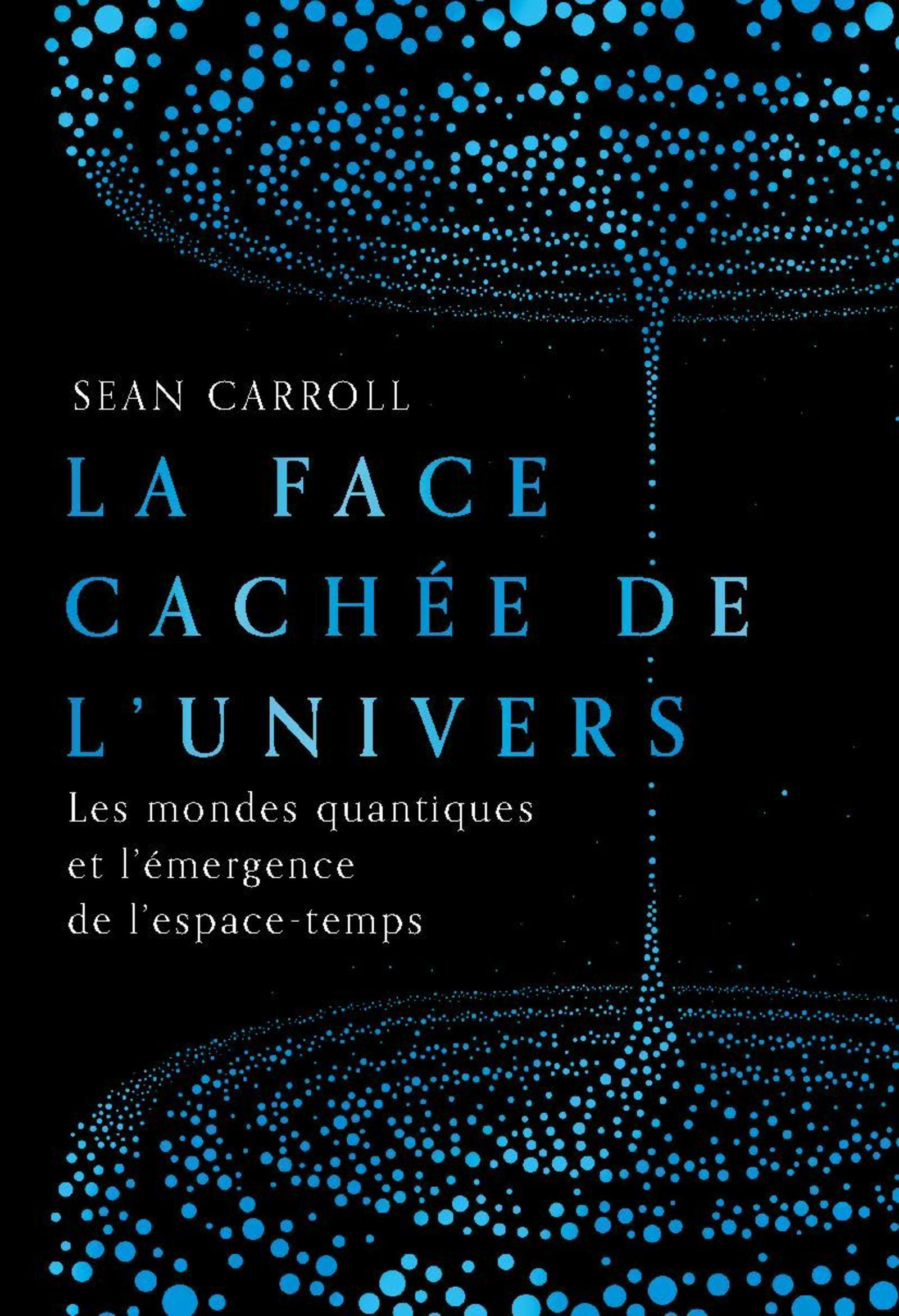 LA FACE CACHEE DE L'UNIVERS - LES MONDES QUANTIQUES ET L'EMERGENCE DE L'ESPACE-TEMPS