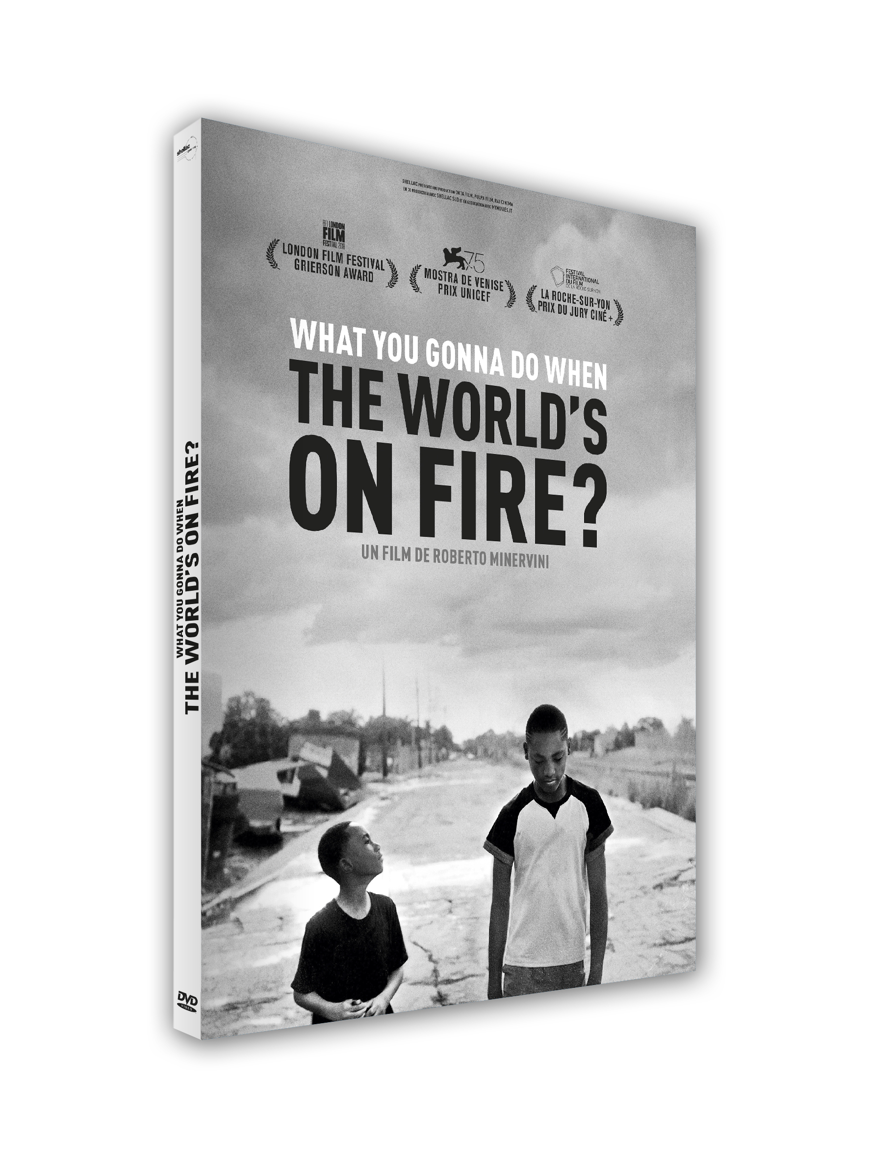 WHAT YOU GONNA DO WHEN THE WORLD'S ON FIRE  ? - DVD