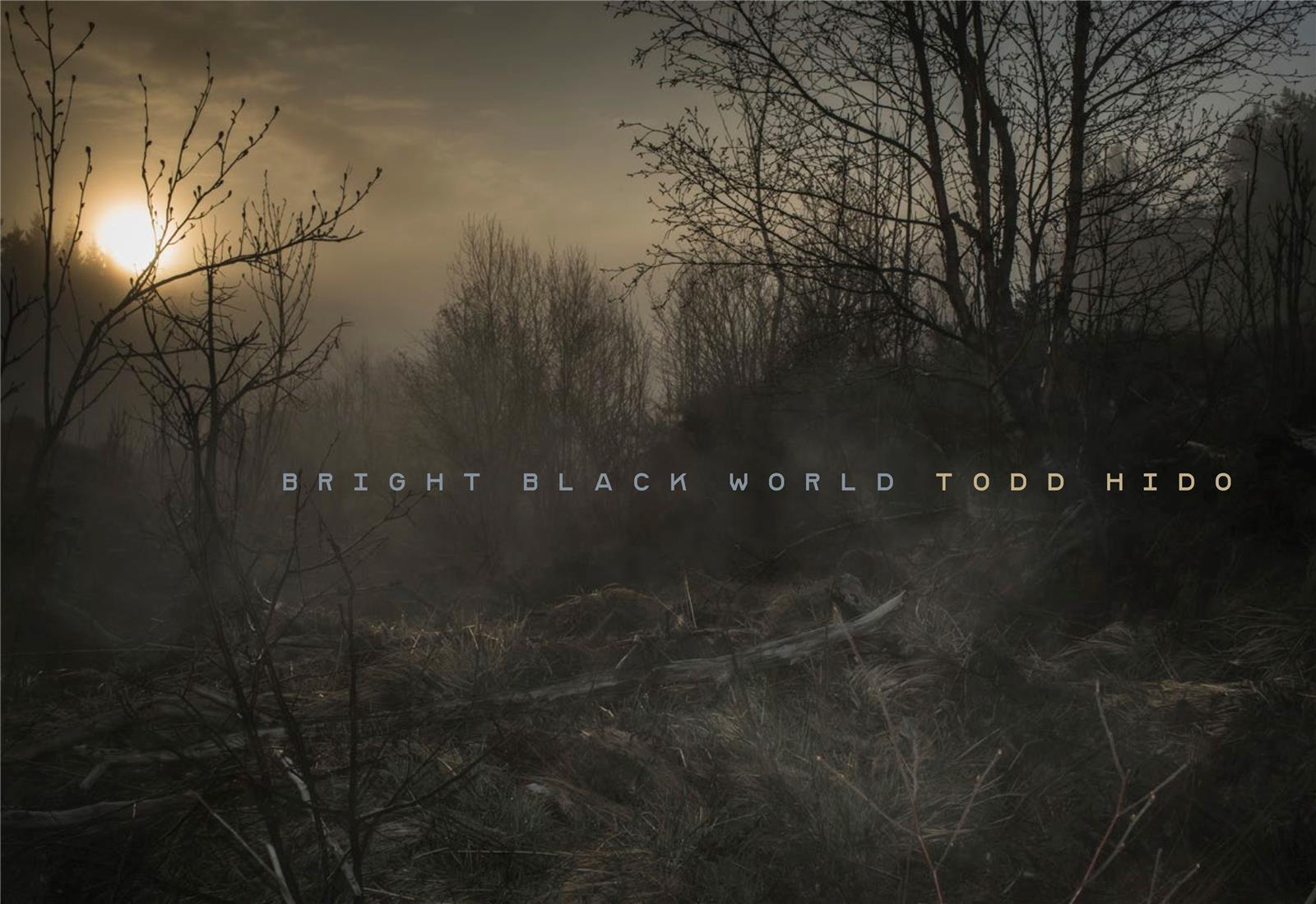 TODD HIDO BRIGHT BLACK WORLD /ANGLAIS