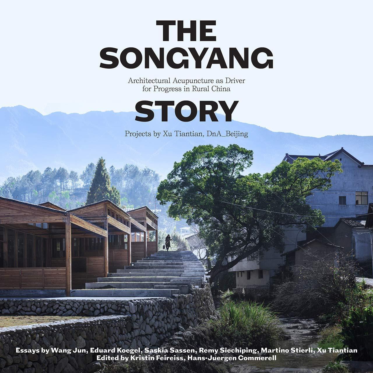 XU TIANTIAN THE SONGYANG STORY /ANGLAIS