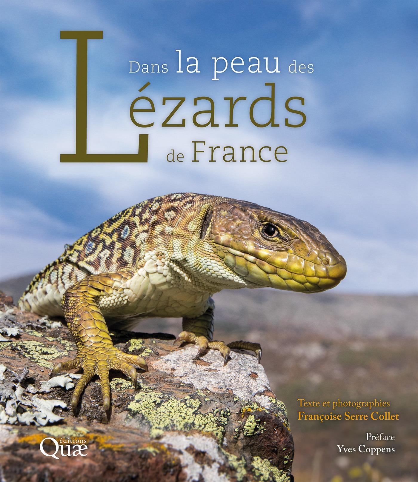 Dans la peau des lézards de France