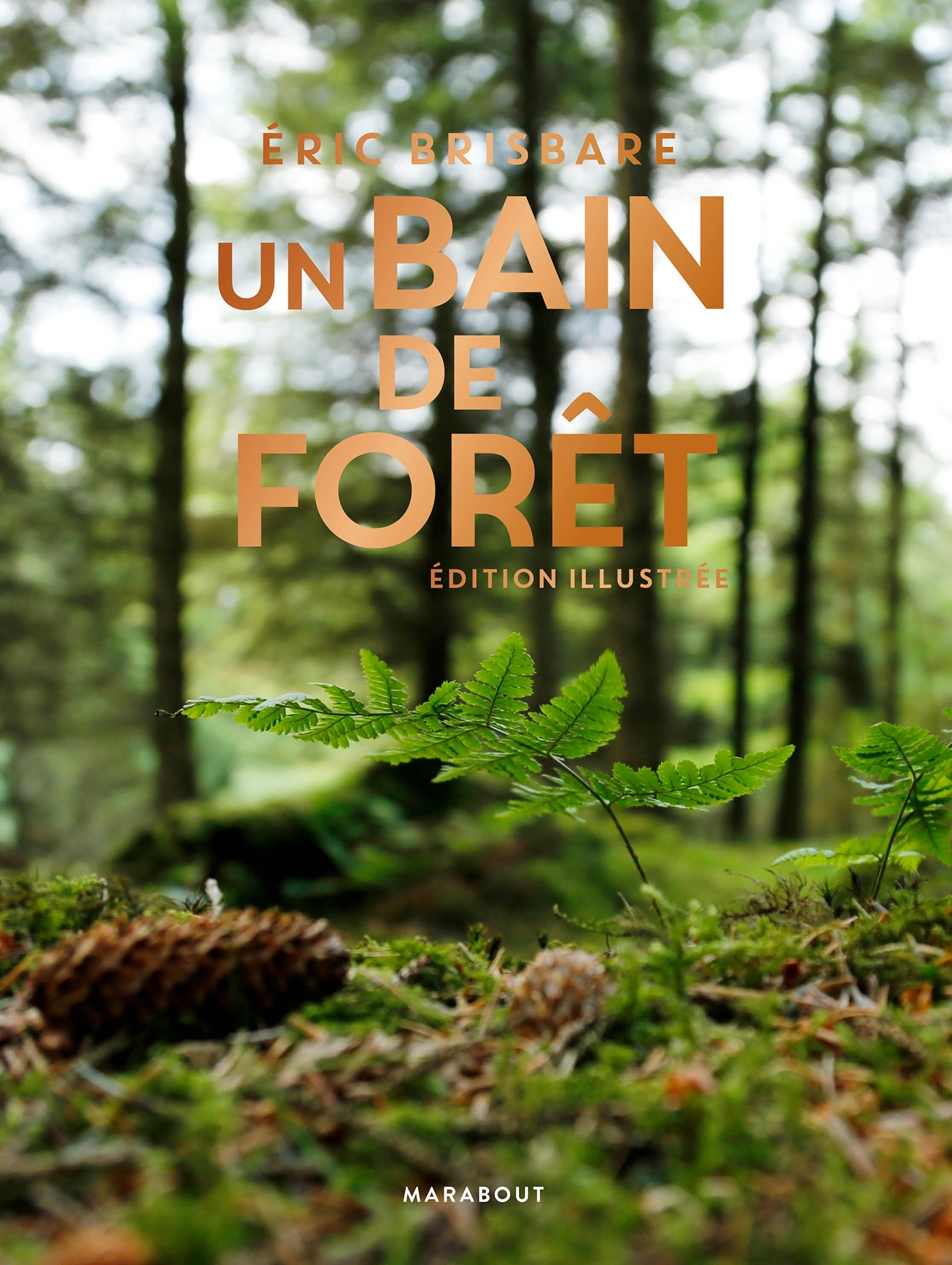 UN BAIN DE FORET - EDITION ILLUSTREE
