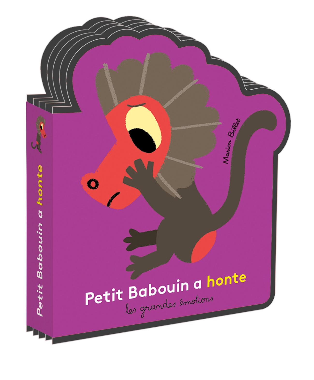 PETIT BABOUIN A HONTE