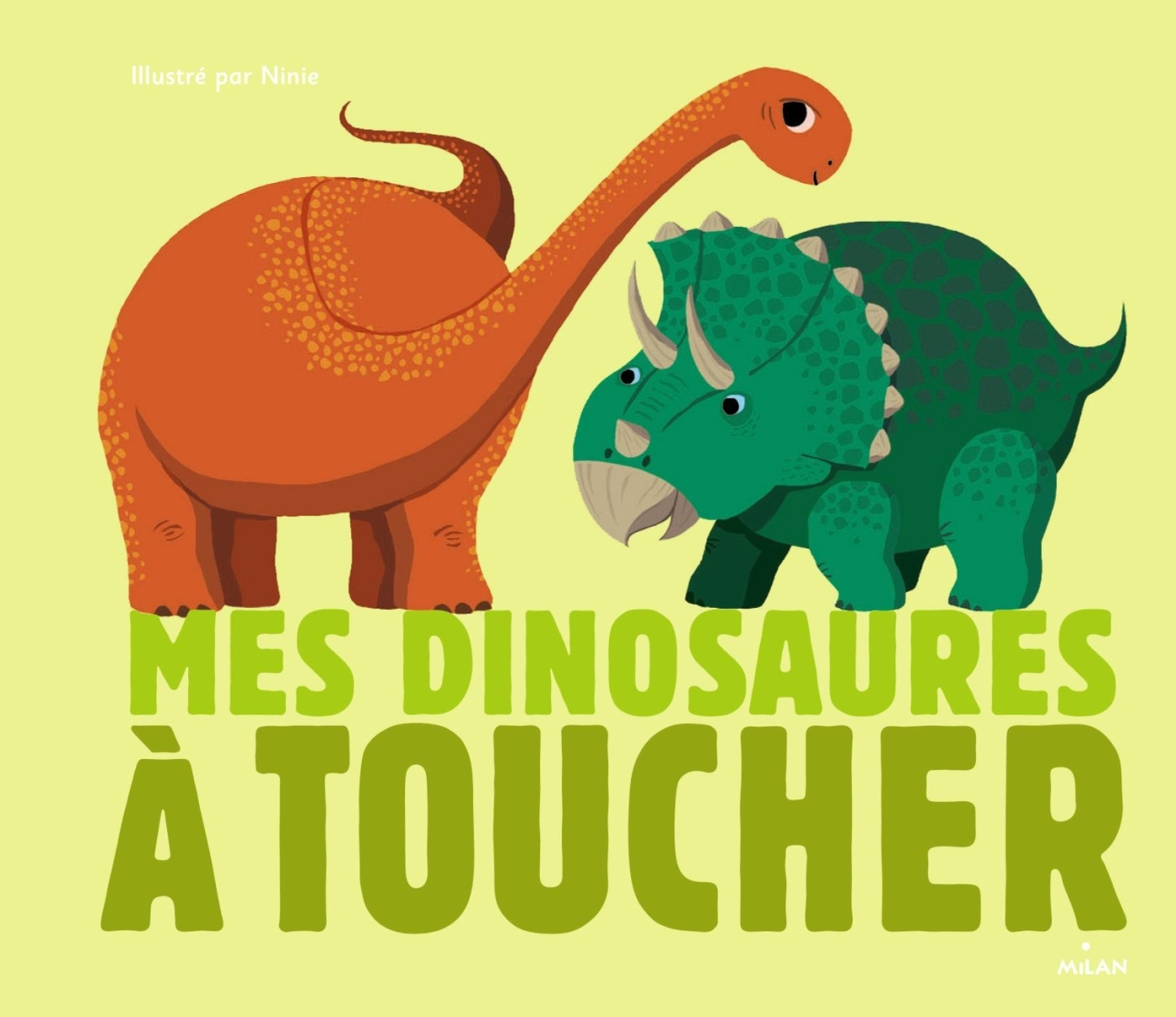 MES DINOSAURES A TOUCHER