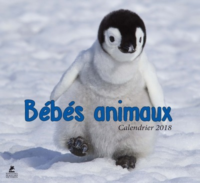 BEBES ANIMAUX, CALENDRIER 2018