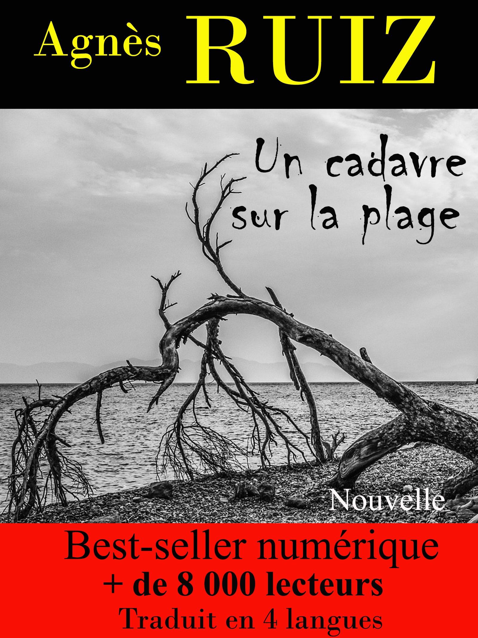Un cadavre sur la plage (Les enquêtes de Rachel Toury)