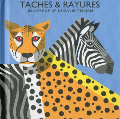 TACHES & RAYURES EN POP-UP