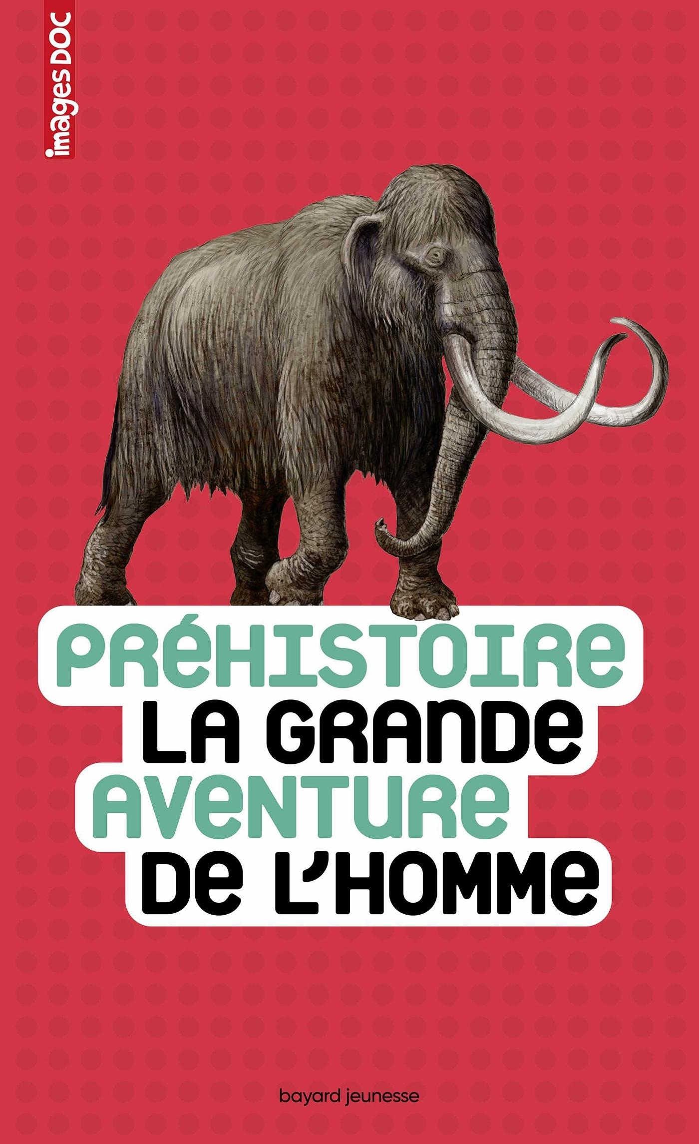 PREHISTOIRE, LA GRANDE AVENTURE DE L'HOMME
