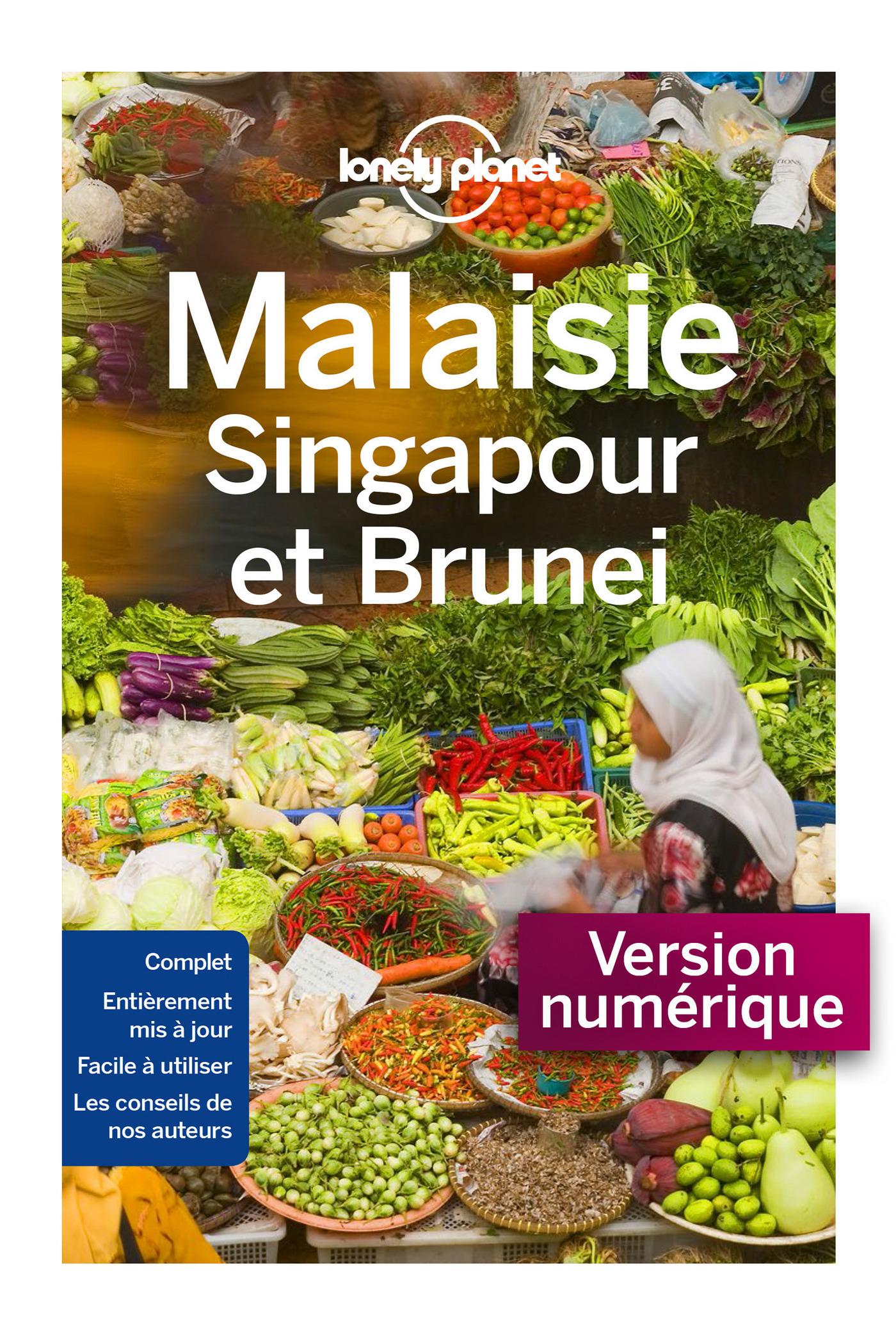 Malaisie, Singapour et Brunei - 8ed