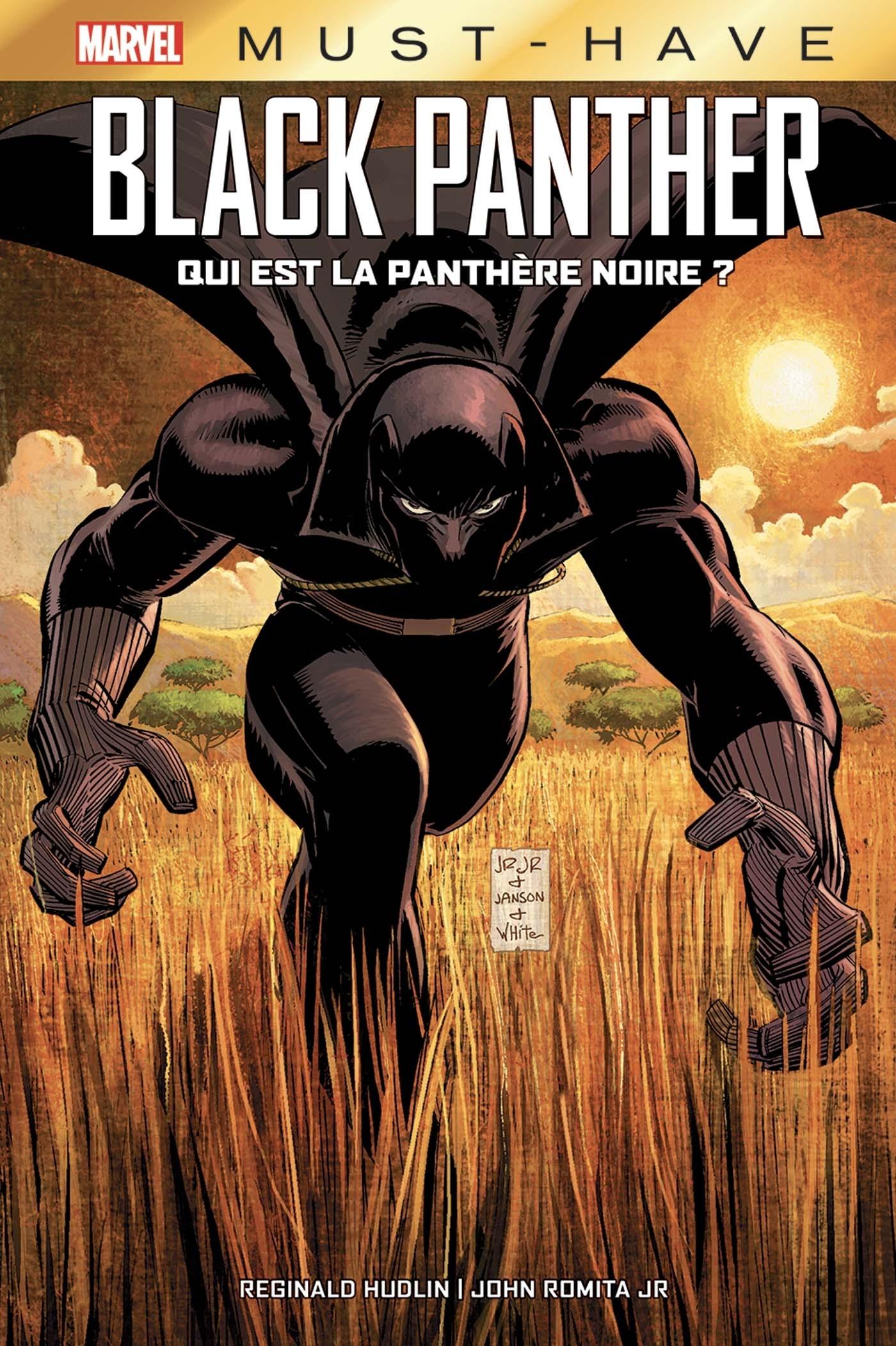 BLACK PANTHER: QUI EST LA PANTHERE NOIRE ?