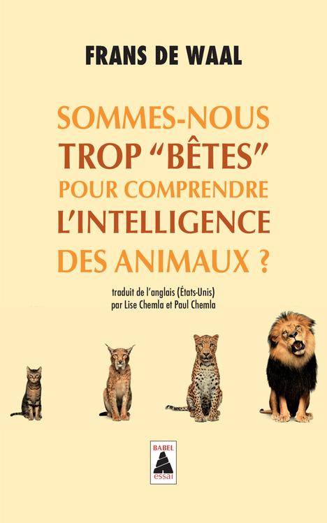 SOMMES-NOUS TROP BETES POUR COMPRENDRE L'INTELLIGENCE DES ANIMAUX ? (BABEL)