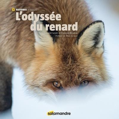 L'ODYSSEE DU RENARD