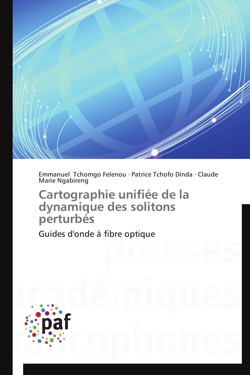CARTOGRAPHIE UNIFIEE DE LA DYNAMIQUE DES SOLITONS PERTURBES