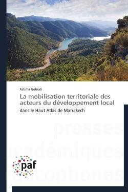 LA MOBILISATION TERRITORIALE DES ACTEURS DU DEVELOPPEMENT LOCAL