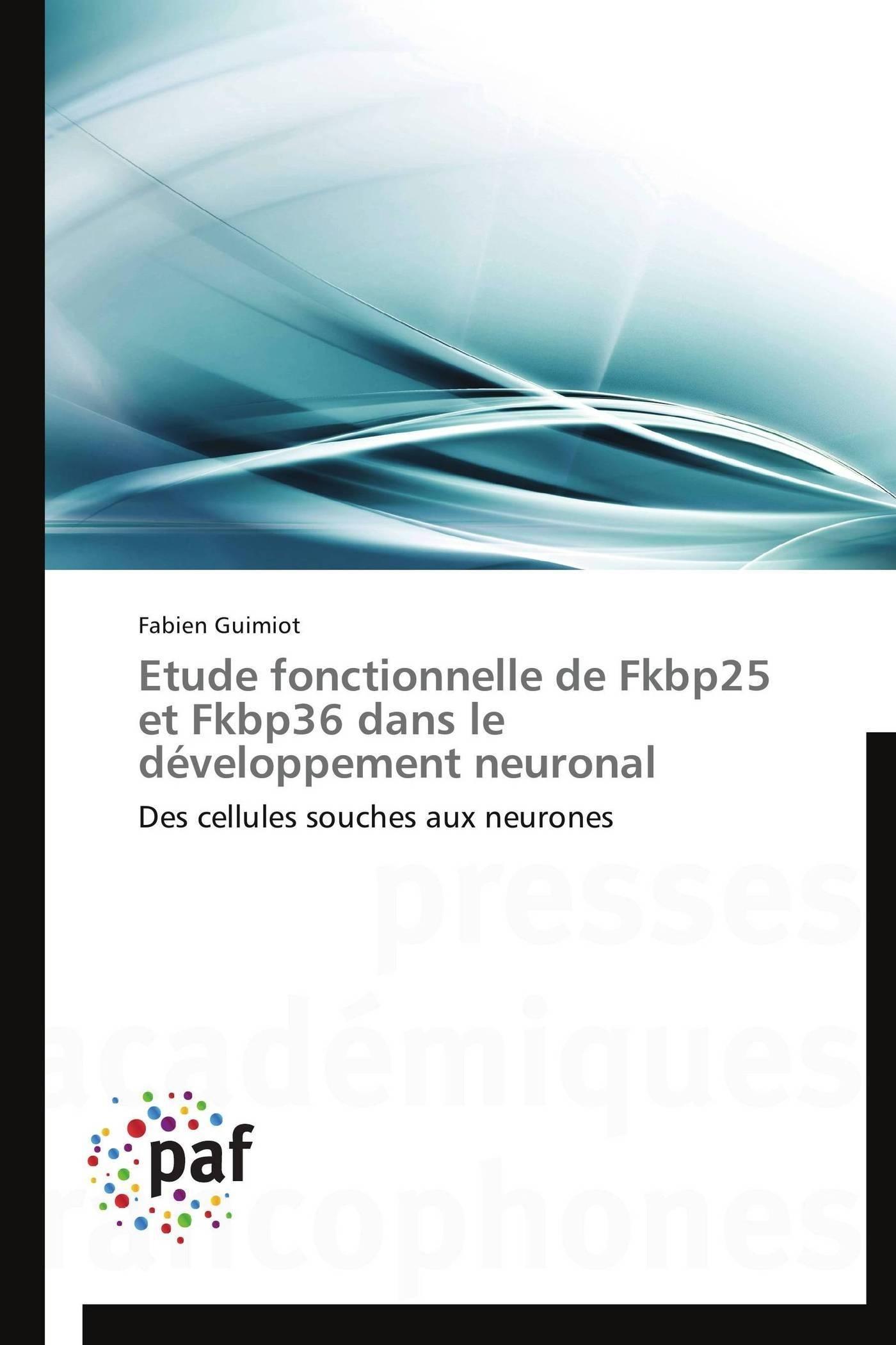 ETUDE FONCTIONNELLE DE FKBP25 ET FKBP36 DANS LE DEVELOPPEMENT NEURONAL
