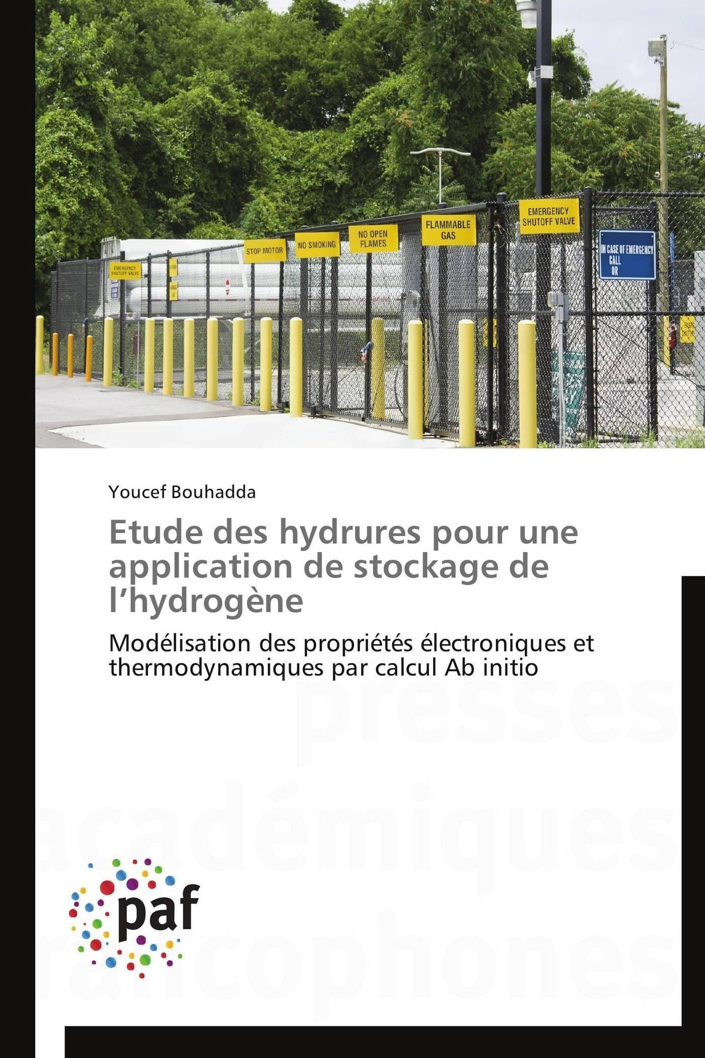 ETUDE DES HYDRURES POUR UNE APPLICATION DE STOCKAGE DE L HYDROGENE