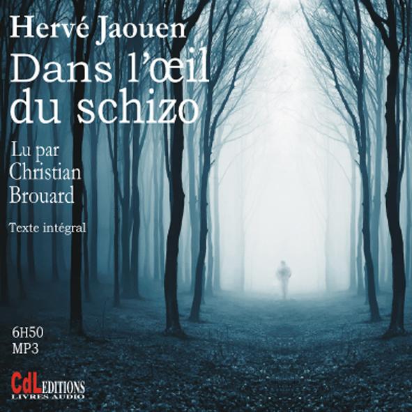 DANS L OEIL DU SCHIZO (CD MP3)
