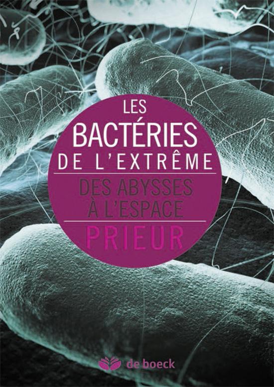 BACTERIES DE L'EXTREME (LES)