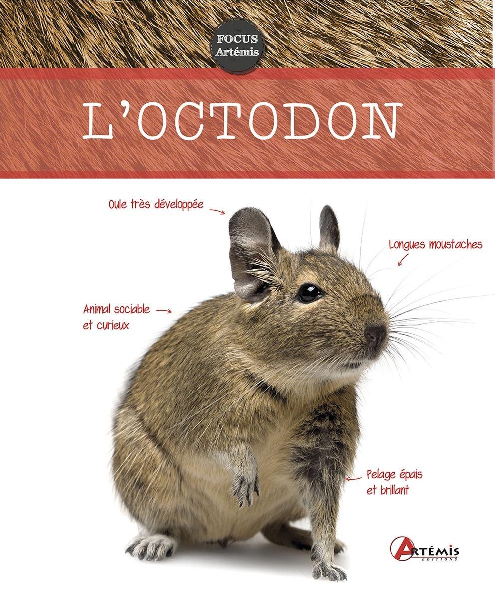 OCTODON