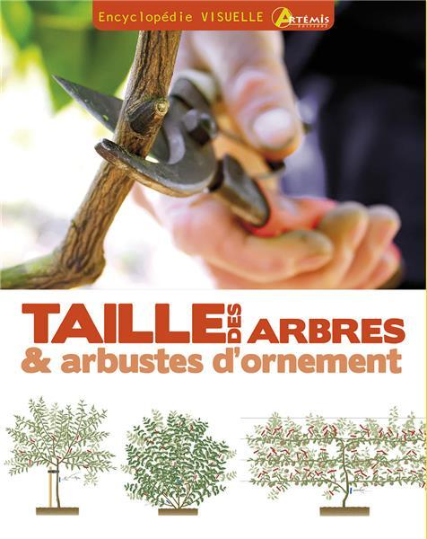 TAILLE DES ARBRES & ARBUSTES D'ORNEMENT