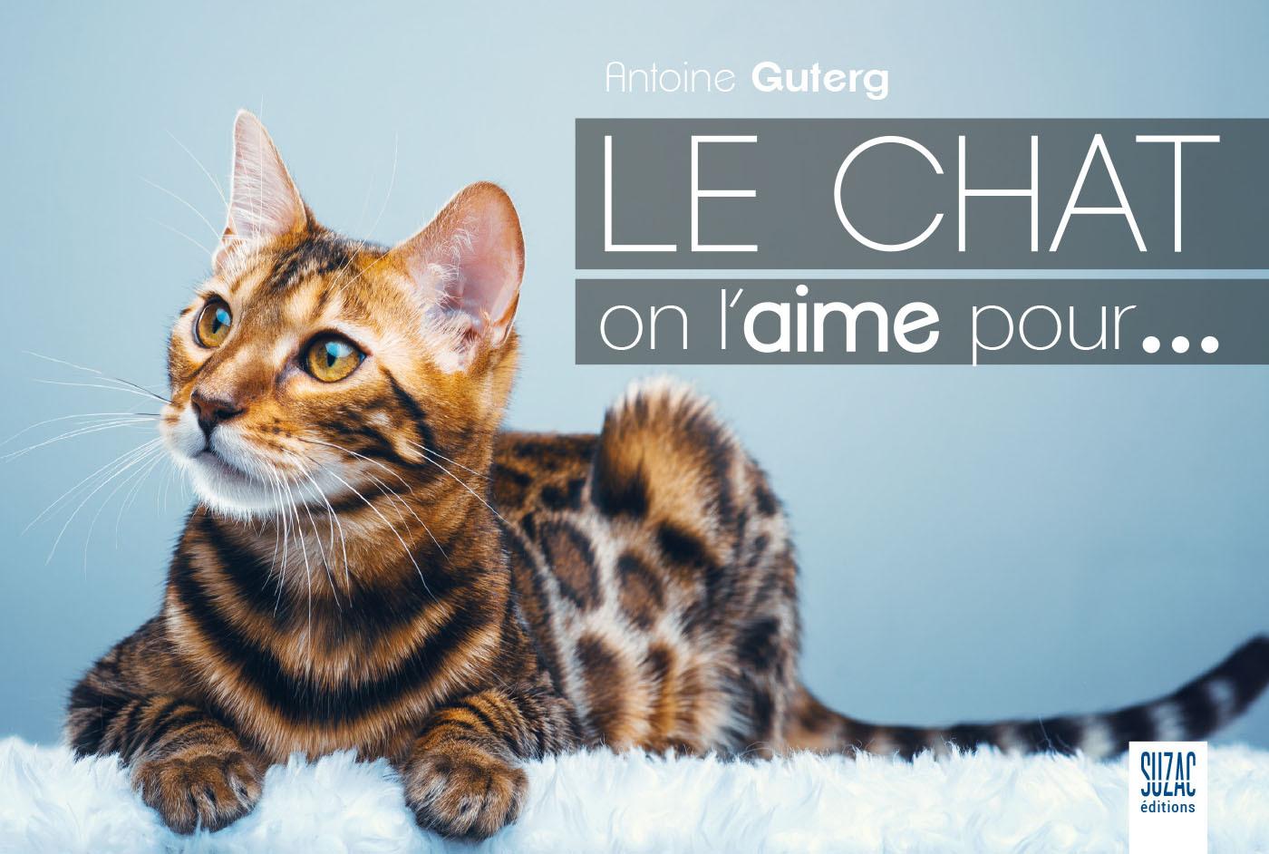 LE CHAT ON L'AIME POUR...