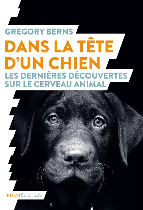 DANS LA TETE D'UN CHIEN - LES DERNIERES DECOUVERTES SUR LE CERVEAU ANIMAL