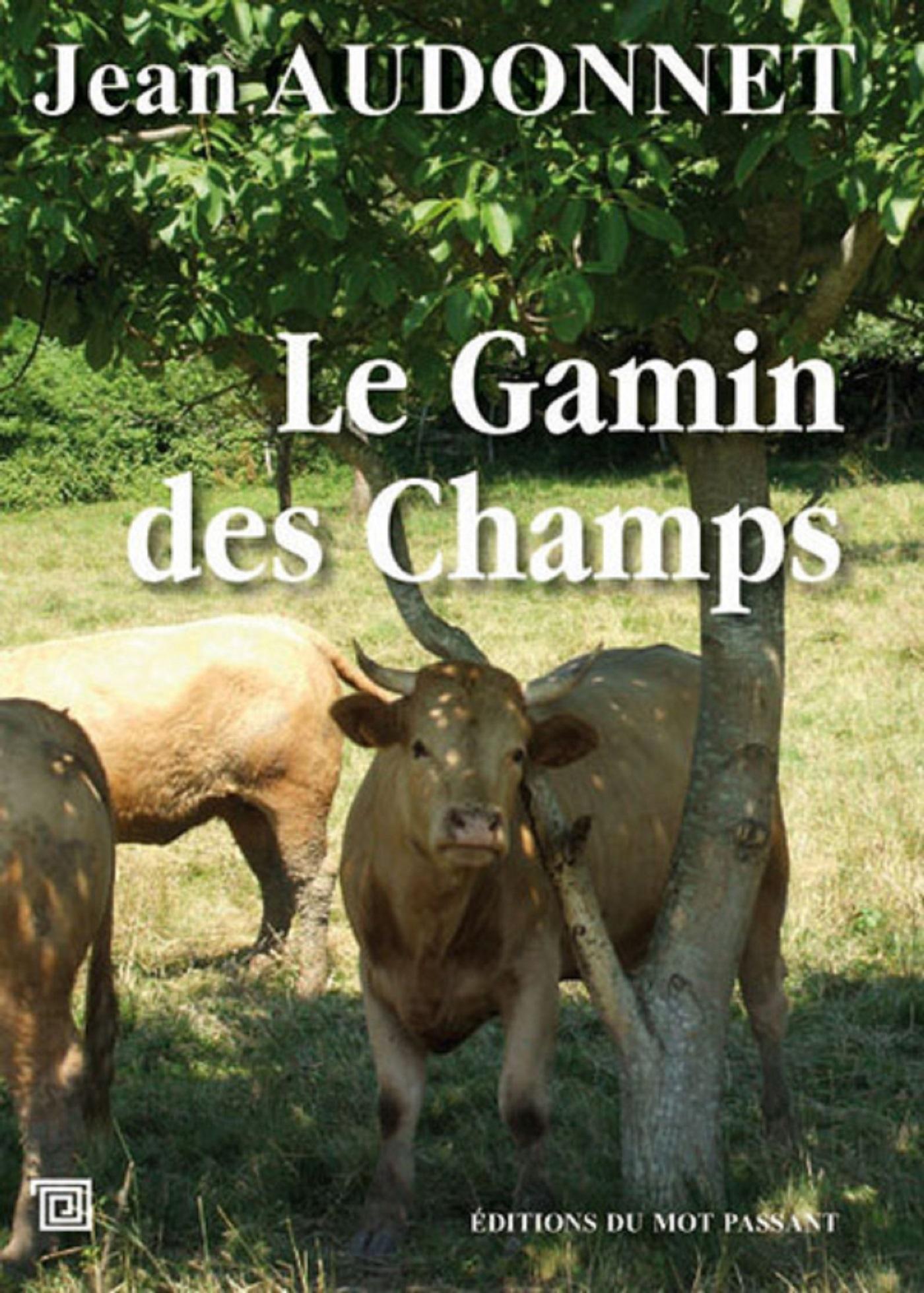 GAMIN DES CHAMPS (LE)