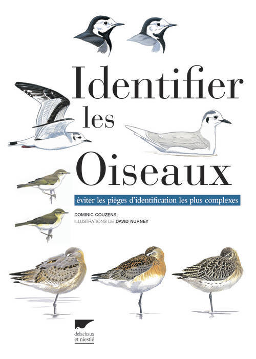 IDENTIFIER LES OISEAUX. EVITER LES PIEGES D'IDENTIFICATION LES PLUS COMPLEXES