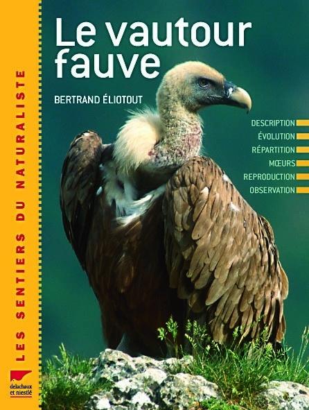 VAUTOUR FAUVE (LE)