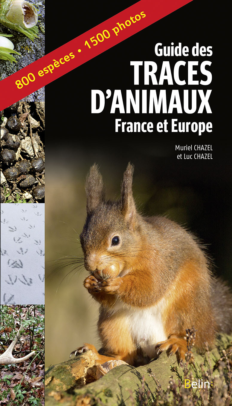 GUIDES DES TRACES D'ANIMAUX