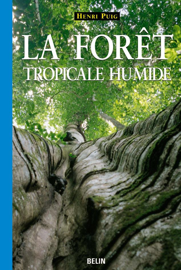 LA FORET TROPICALE HUMIDE
