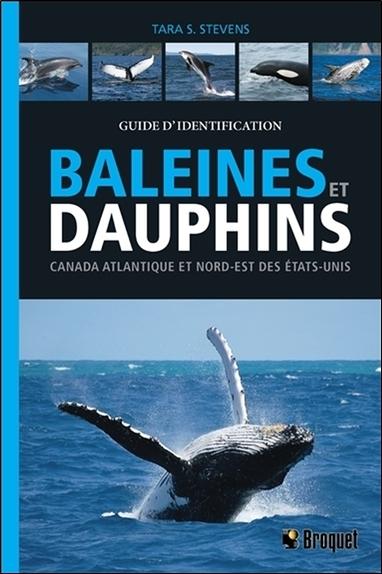 BALEINES ET DAUPHINS - CANADA ATLANTIQUE ET NORD-EST DES ETATS-UNIS