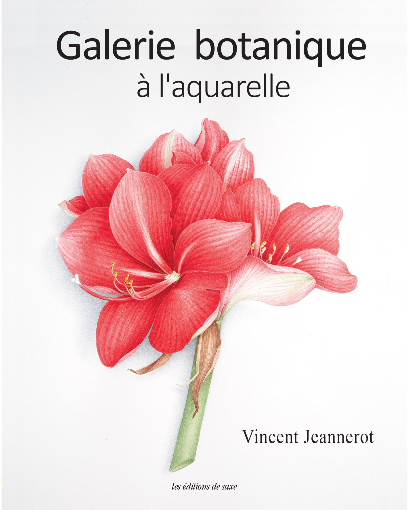 GALERIE BOTANIQUE A L'AQUARELLE
