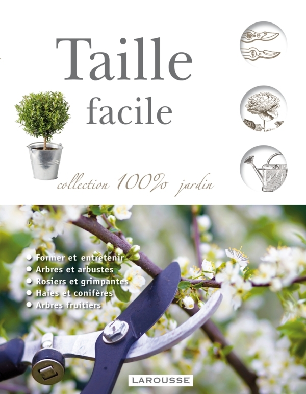 TAILLE FACILE - NOUVELLE PRESENTATION