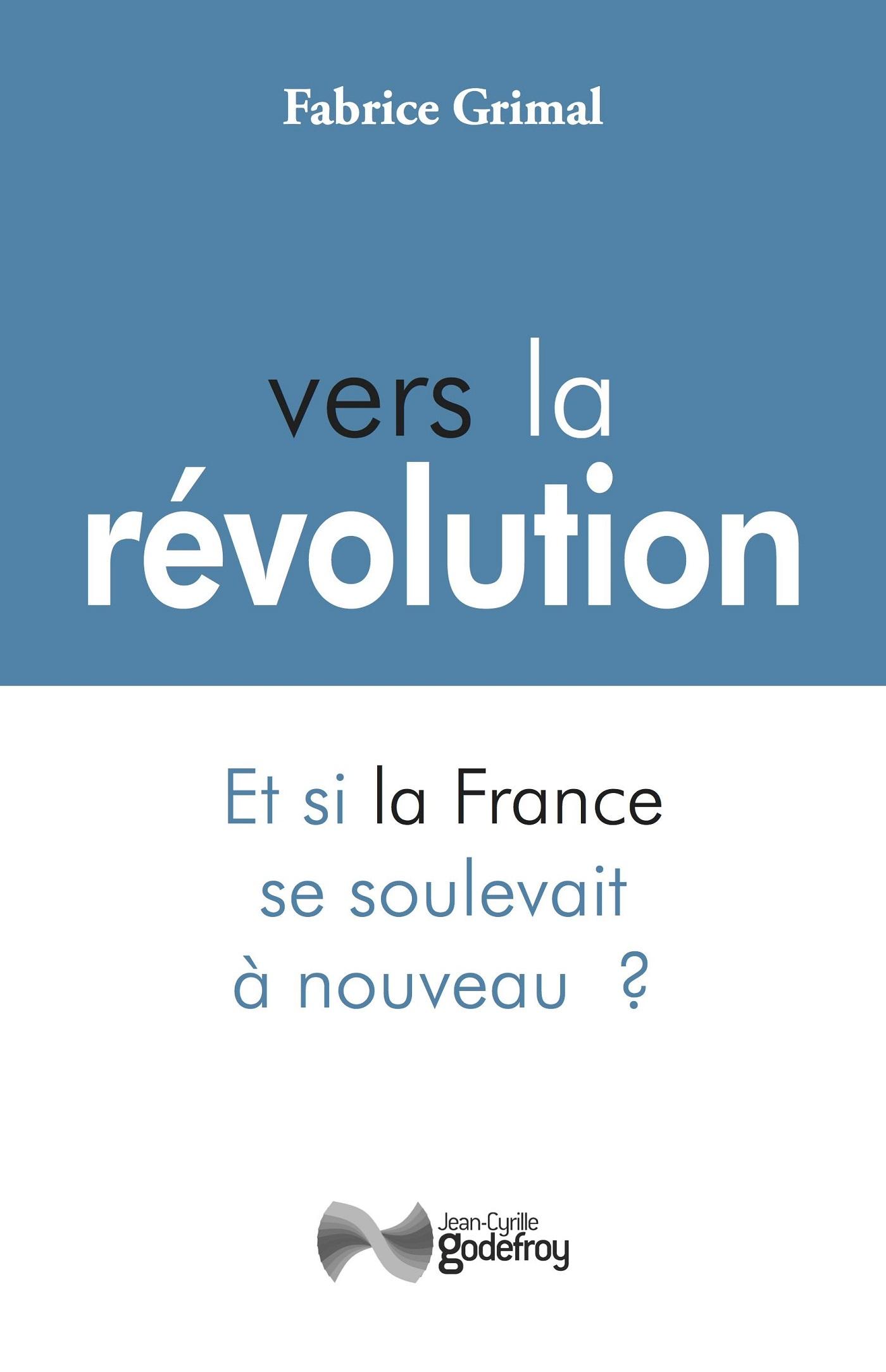 VERS LA REVOLUTION - ET SI LA FRANCE SE SOULEVAIT A NOUVEAU ?