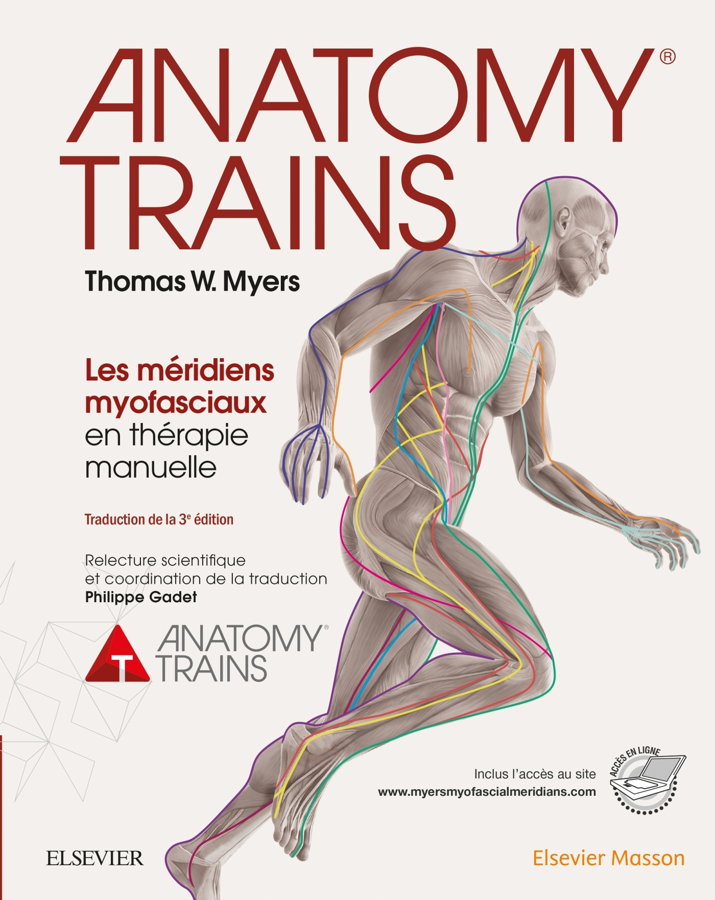 ANATOMY TRAINS - LES MERIDIENS MYOFASCIAUX EN THERAPIE MANUELLE